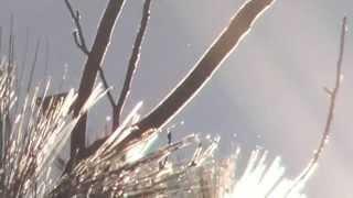 11 26 2014 Flying light entities