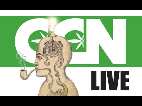 Cannabis Culture News LIVE: Getting Creative With Marijuana