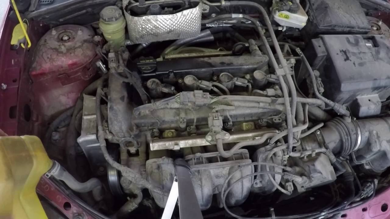 Vibration Fix Replacing Motor Mount on a 2005 Ford Focus  YouTube