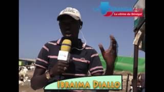 """Gambar cover Lutte contre la criminalité: les sénégalais disent """"OUI"""" à l'institution de la peine de mort"""