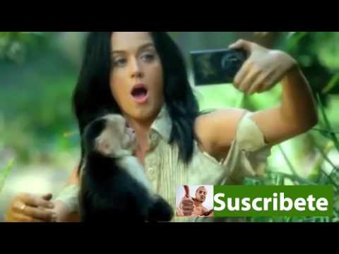 Download Katy Perry Roar MP3 High Quality For Free