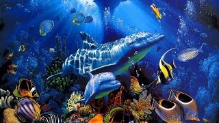 Phép Màu Của Đại Dương 7 Lục Địa  (HD thuyết minh - NatGeo Tiếng Việt)