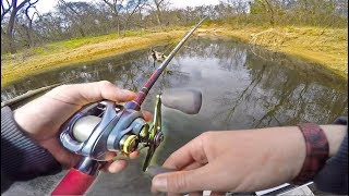 Super Shallow Water Fishing For Backwater Giants! (Big Bass)
