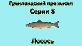 Русская Рыбалка 3.99 Гренландский промысел 5 - Лосось