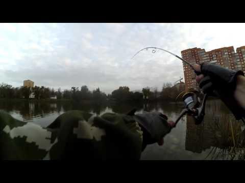 Платная рыбалка белая дача. КРХ Белая Дача Щука за 2,5кг на джиг