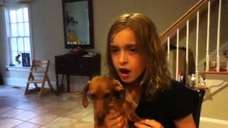 Ruby The Dachshund Sings Happy Birthday