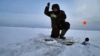 МОНСТРЫ ГЛУБИН снова на крючках Якутия Yakutia