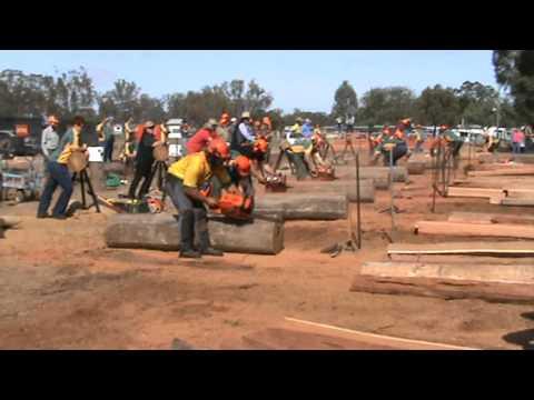 Australian Chainsaw Racing Titles, Wallumbilla QLD 2010