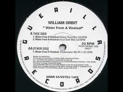 William Orbit - Water From A Vine Leaf (Acid Bath Mix) mp3