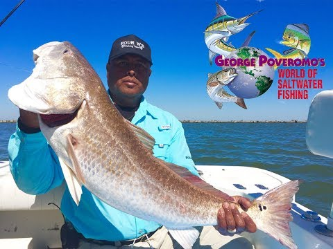 2018 - Episode 8 - Galveston, Texas, Bull Redfish!