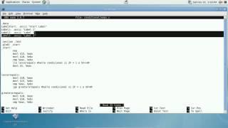 Explotación De Software - Parte V Flujo De Ejecución De Un Programa En Assembly