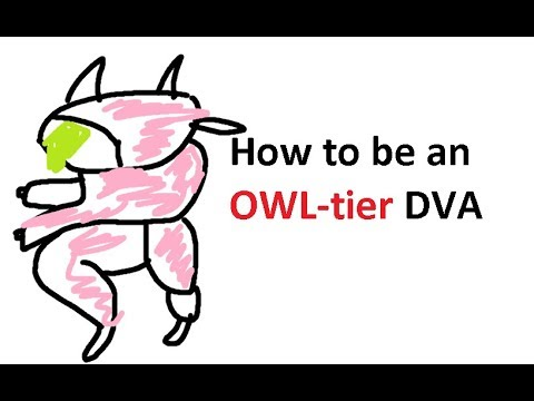 [Review] How to be an OWL-tier DVA