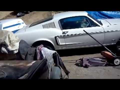 Ford Mustang  Mustang Salvage Yard Over 80 Parts Cars 65 To 1973 Mustangs Los Angeles Area