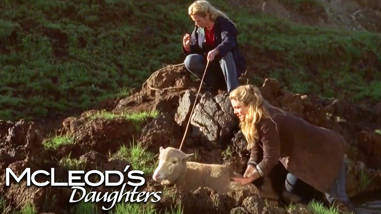 Download Tess Is Left Alone To Run The Farm | McLeod's Daughters