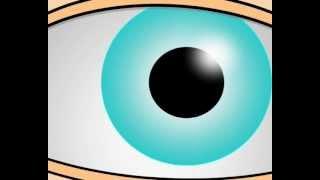 Advanced PowerPoint animation by Liad Gordon