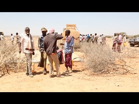Somali Children Drop Out of School Due to Severe Drought