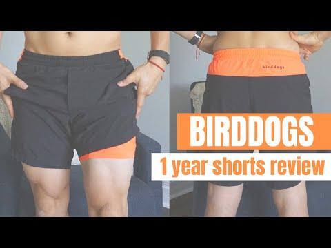 birddogs-shorts-//-thoughts-after-1-year