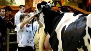 Concours de beauté et de féminité des laitières sur TV28 (version intégrale).