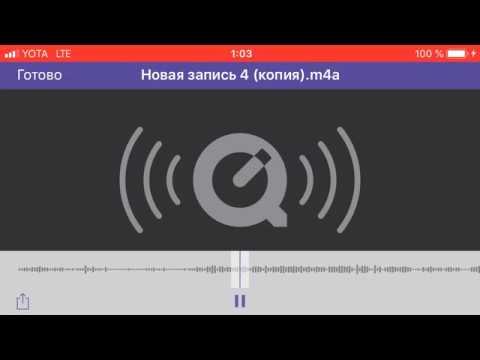 СТО На Борисенко 14 г Гомель директриса разговаривает с студентам