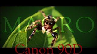 Canon 90D Macro and close ups