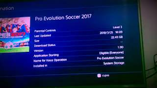 ps4 6.00 hacking