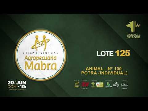 LOTE 125 Nº 100 INDIVIDUAL