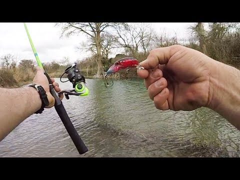 Fishing A New River With The REBEL Wee Crawfish