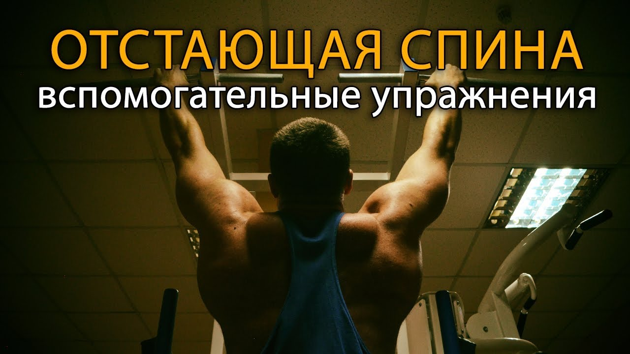 Отстает спина? Вспомогательные упражнения на отстающие мышцы спины