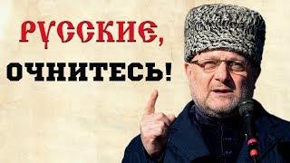 Чеченский министр: «Русские православные братья, что вы творите с собой?»