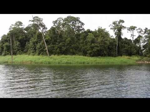 Fishing Trip To Tinaroo Dam