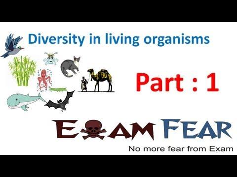 Biology Diversity in Living Organisms part 1 (Introduction) CBSE class 9 IX