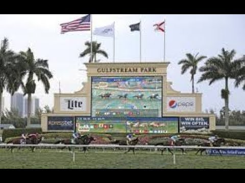 Gulfstream Park Horse Racing Picks and Predictions ...