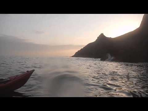 Kayaking Dingle with Basking Shark 16 April 2015, Irish Adventures