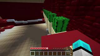 Minecraft 10x10 Harita
