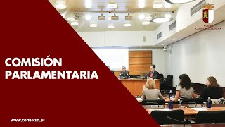 Comisión de Bienestar Social (21-01-2020)