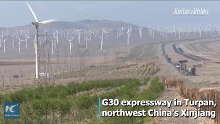 """China is greening a """"devil wind zone"""" in Xinjiang as part of effort..."""