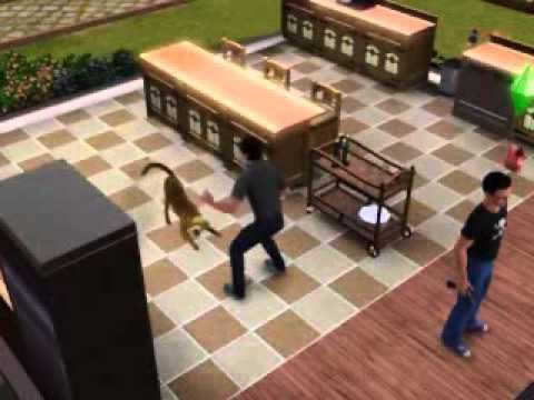 Gun Mod in The Sims 3