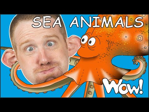 Sea Animals for Kids from Steve and Maggie Stories | Free Speaking Wow English TV