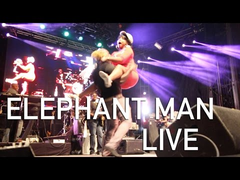 TMTV | Elephant Man LIVE Montreal International Reggae Festival 2016