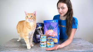 Blue Buffalo Cat Food Review