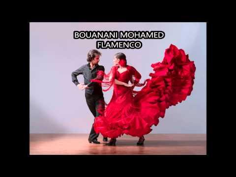 BOUANANI MOHAMED Flamenco Accordion Music