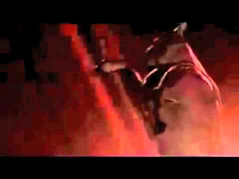 Chicago Bulls video ringtone.m4v