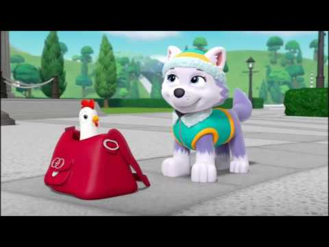 PAW PATROL Chase x Everest tribute