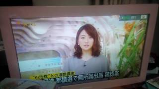 今では彼女の系列の美女子もTV界隈で増えてきて:自分的に小泉麻耶の系譜...