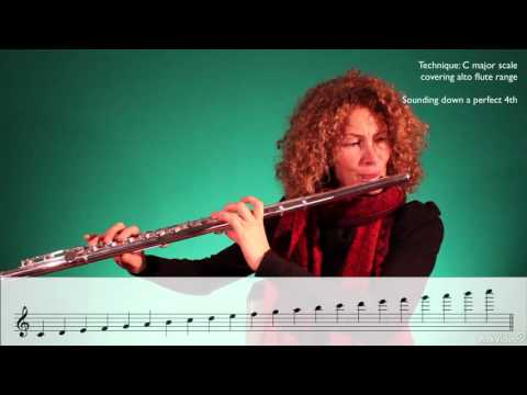 Orchestration 102: The Wind Section - 4. The Flute Family