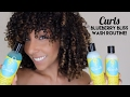 CURLS Blueberry Bliss Review & Wash Routine! | BiancaReneeToday