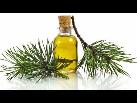 Пихтовое масло - одно из средств, очищающее ЛИМФУ и КРОВЬ