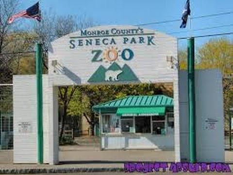 Seneca  Park Zoo ,  Rochester NY