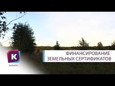 Земельные сертификаты в Калининграде для многодетных семей