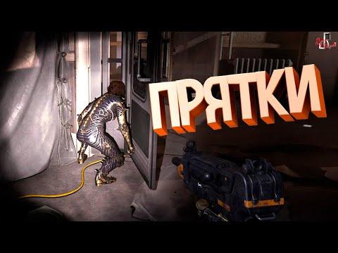 Прятки ( Wolfenstein YB / CS GO / GTA 5 / MW )